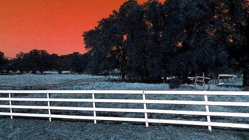Wood Rail Fenced Pasture