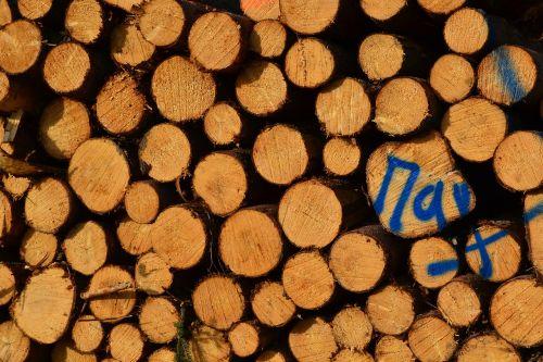 wood stack tree saw