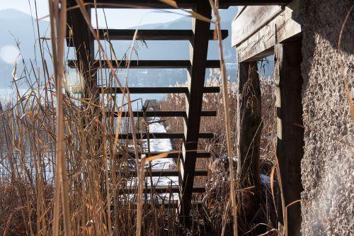 wood stairs web boardwalk