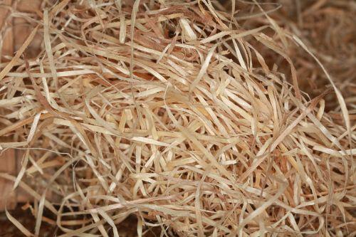 wood wool chips wood