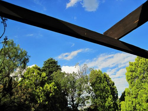 Wooden Beams Against The Sky