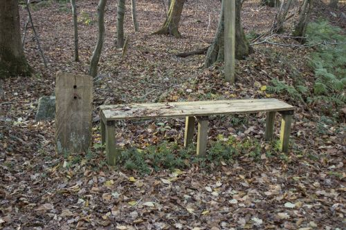 wooden bench bank nature