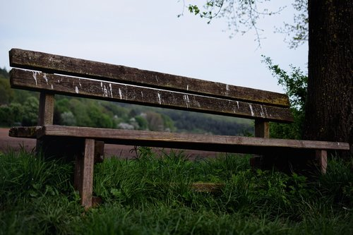 wooden bench  nature  bench