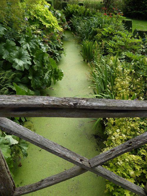 wooden bridge brook green bridge brook duckweed