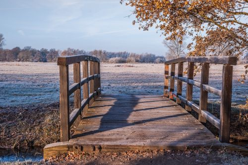 wooden bridge meadow ripe