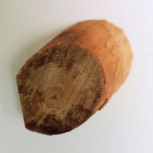 Wooden Burl