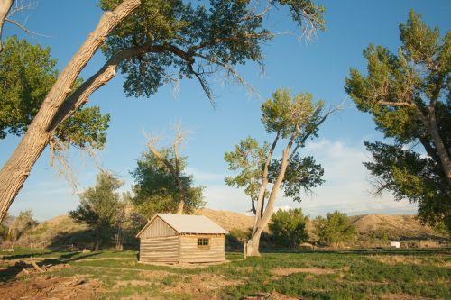 Wooden Cabin Homestead