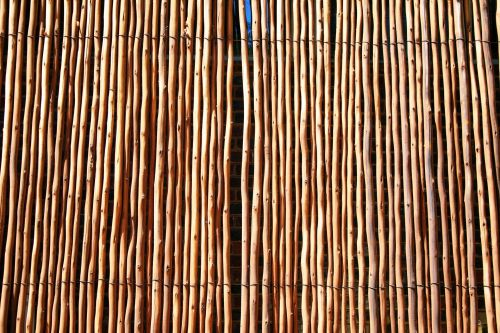 Wooden Cane Screen