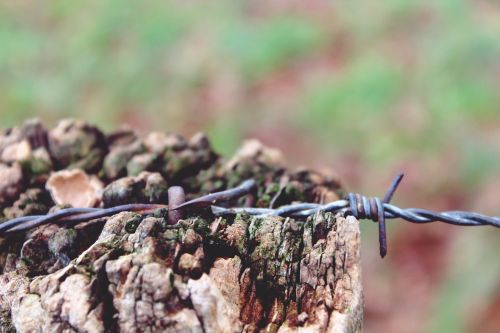 wooden mast wire wire fence