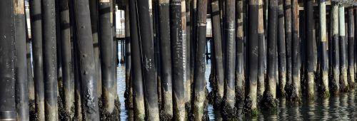 wooden posts sea sea bridge