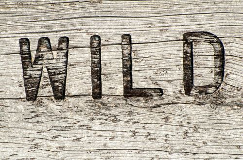 wooden sign wild rustic
