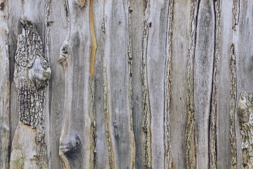 wooden wall wall wood