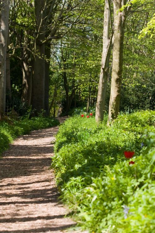 Woodland Trail Walk