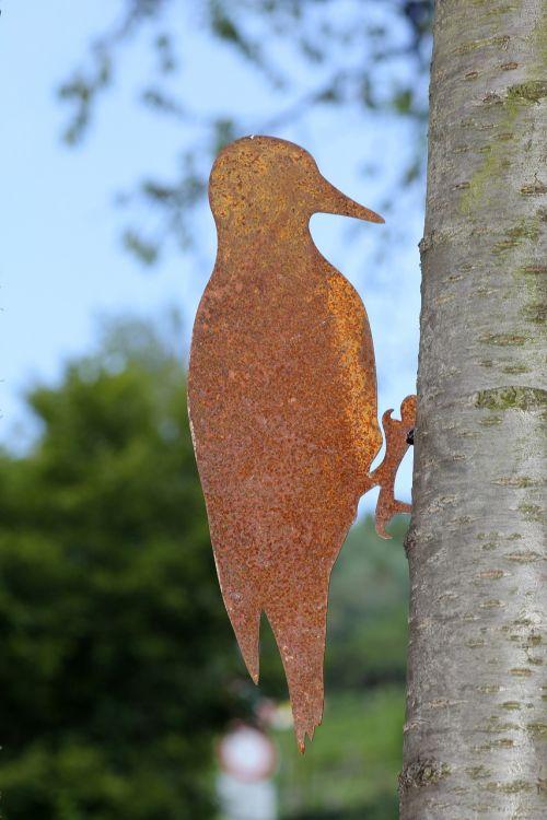 woodpecker tree nature