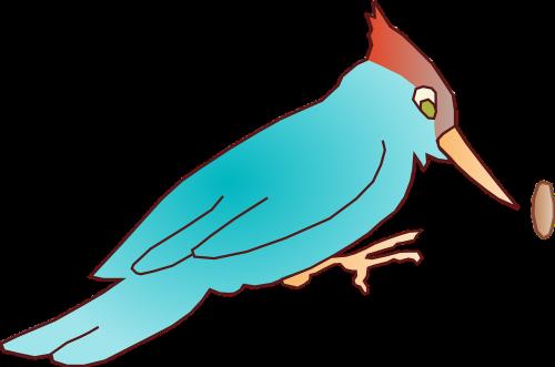 woodpecker blue bird