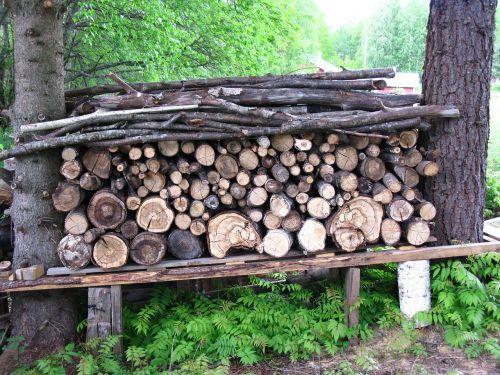 woodpile chopped logs