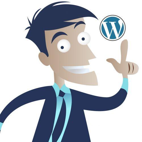 wordpress idea business man