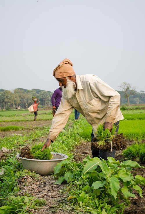working  people  farming