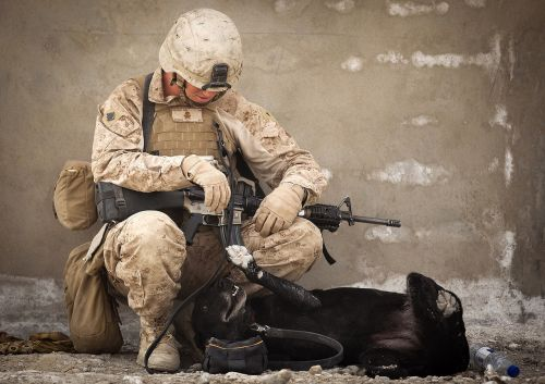 working dog military handler