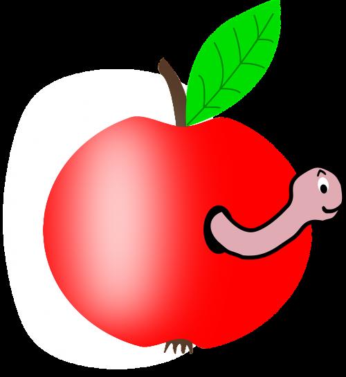 wormhole apple worm