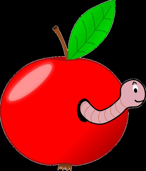 wormhole apple fruit