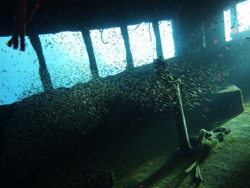 wreck underwater diving