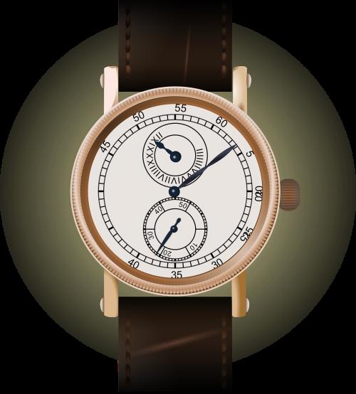 wrist watch watch wristwatch