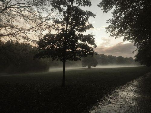 wroclaw fog landscape