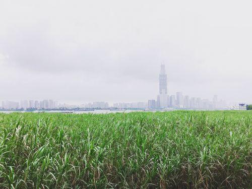 wuhan riverside the yangtze river
