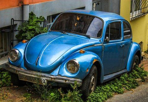 ww  volkswagen  german