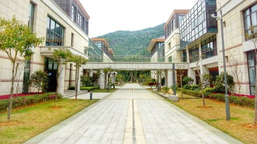 xin hua business school central axis school