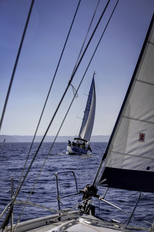 yacht,boat,sailing,sea,ship,water,ocean,sail,marine,cruise,nautical,yachting,sport,wind,torbay,devon rigging,sailboat,summer,race