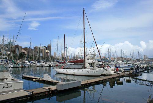 yacht club yachts masts