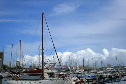 Yacht Club With Yachts