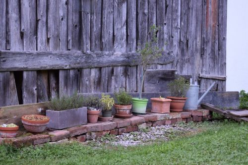 yard garden potted plants