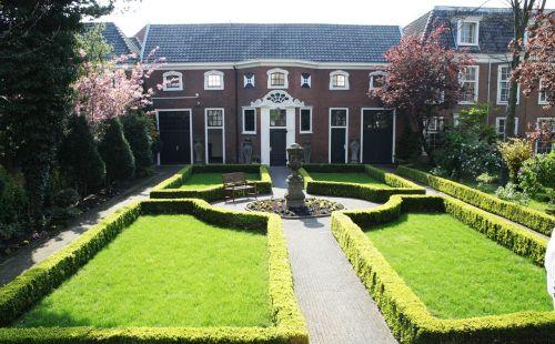 yard landscaping hedges