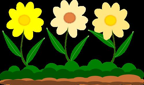 yellow flower vector image garden