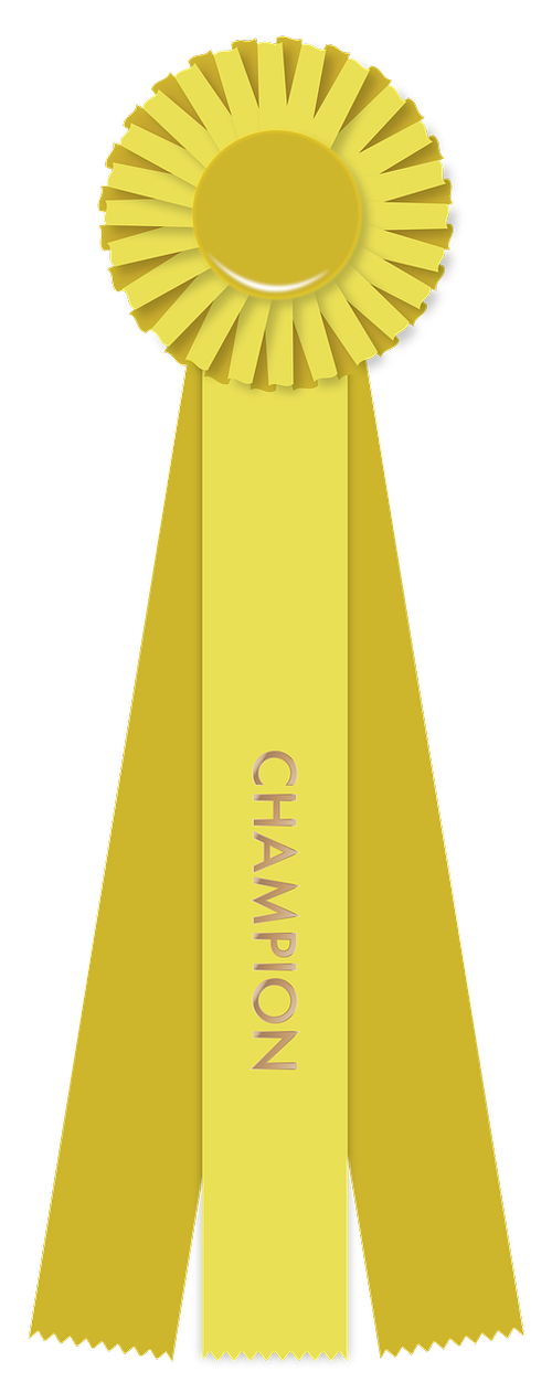 yellow ribbon  champion  winner