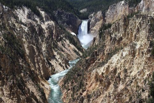 yellowstone national park grand canyon