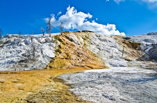 yellowstone  mammoth hot springs  scenic