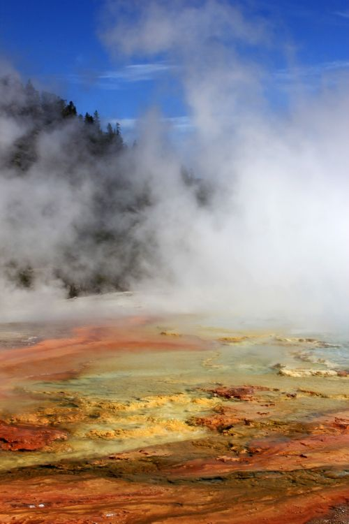 yellowstone hot springs nature