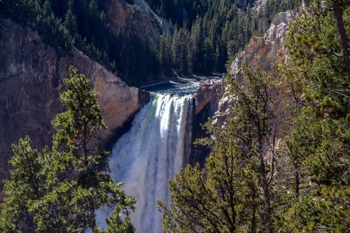 yellowstone national park lower falls waterfall