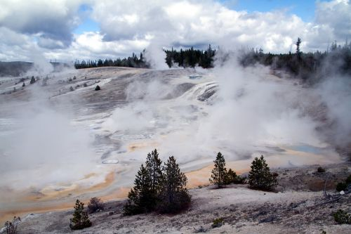 yellowstone national park wyoming mammoth springs