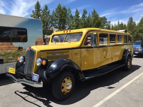 yellowstone national park tour bus yellowstone