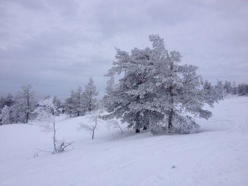 ylläs lapland snow