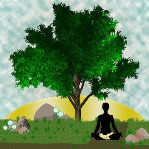 yoga meditation zen