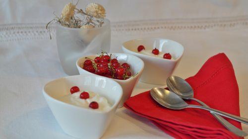 yogurt currants dessert