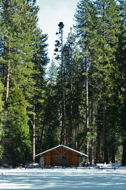 josemitas,rąstinis namas,kalnų namelis,arboretum,miškai,sniegas,mėlynas dangus,kraštovaizdis,dangus,Nacionalinis parkas,Kalifornija,Jungtinės Amerikos Valstijos