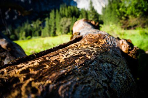 yosemite yosemite valley national parks