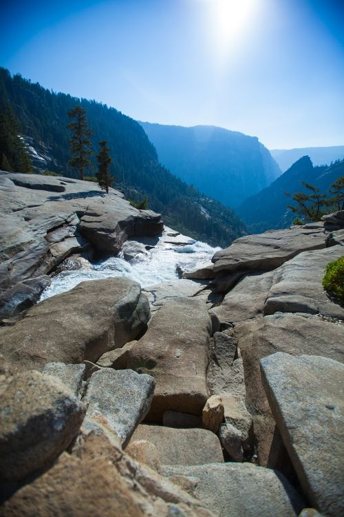 yosemite mountains forest